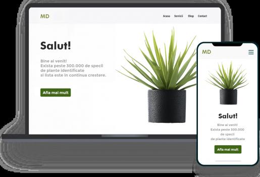 laptop-phone-plant